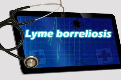 Conoce sobre la enfermedad de Lyme y la experiencia de una deportista con esta patología